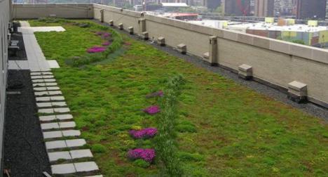 Investigacion techos verdes
